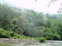 Batang Ai Lake stretches up the Engkari and Ai valleys.